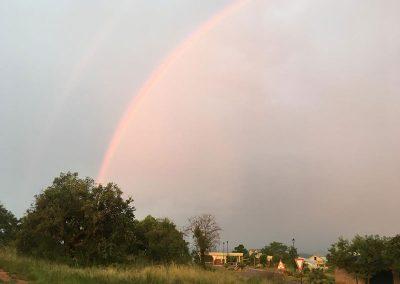 Schoongezigt-Rainbow
