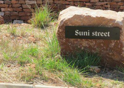 Schoongezigt-Street-Names